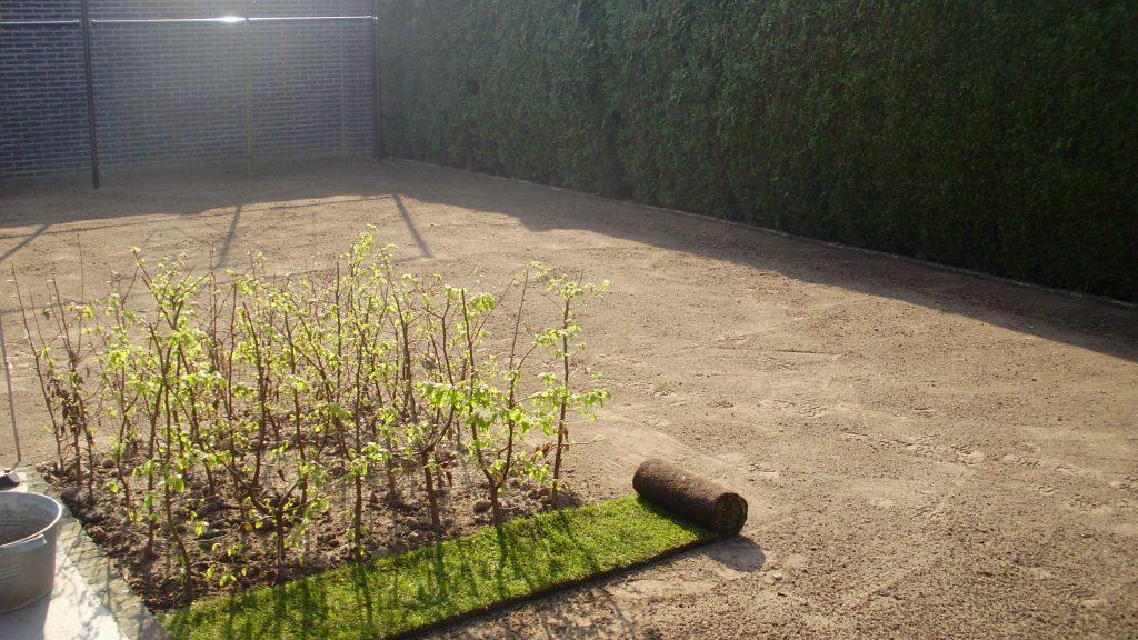 gras-aanleg-2.jpg
