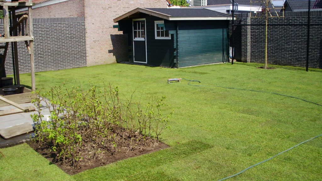 gras-aanleg-3.jpg